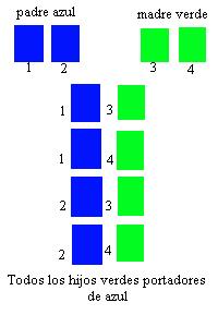 tabla-verde-azul (54K)